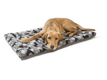 Small Pets High Density Foam Dog Bed , Foldable 2 Way Air Mattress Dog Bed